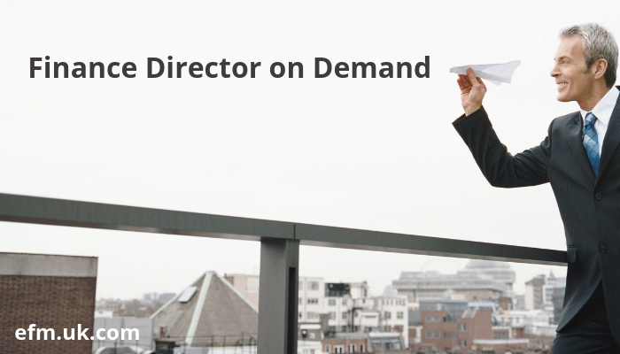 Introducing Finance Director on Demand service for SMEs